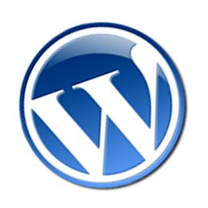 WordPress Yorum Etiketlerini Kaldırmak